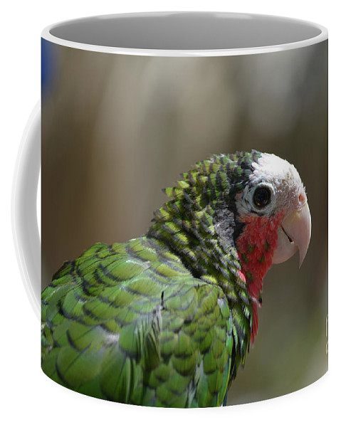 Conure Coffee Mug featuring the photograph Profile Of A Conure Parrot Up Close by DejaVu Designs