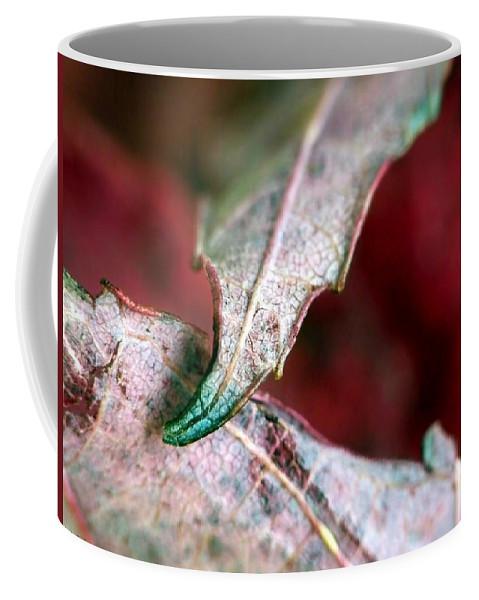 Macro Coffee Mug featuring the photograph Promise by Lauren Radke