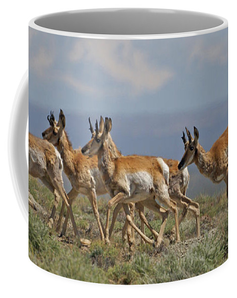Pronghorn Coffee Mug featuring the photograph Pronghorn Antelope Running by Heather Coen