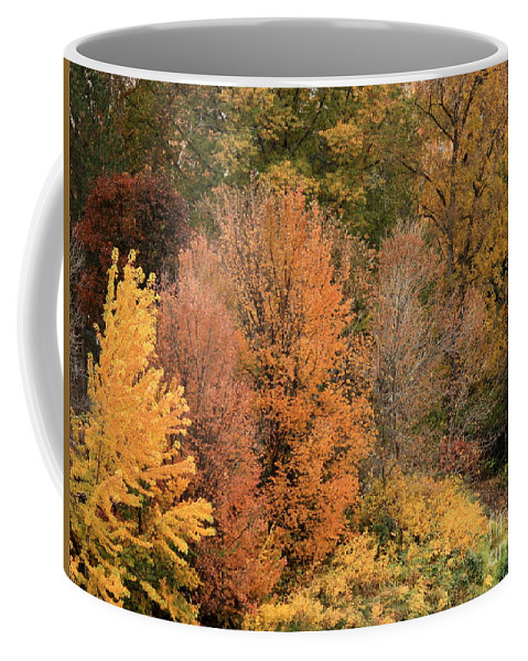 Coffee Mug featuring the photograph Prosser - Fall Foliage by Carol Groenen