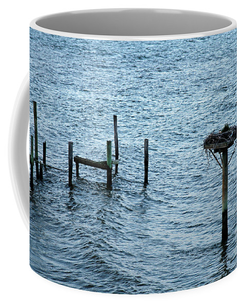Clay Coffee Mug featuring the photograph Protected Osprey Nest by Clayton Bruster