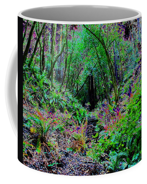 Ferns Coffee Mug featuring the photograph Psychedelic Fern Gully On Mt Tamalpais by Ben Upham III
