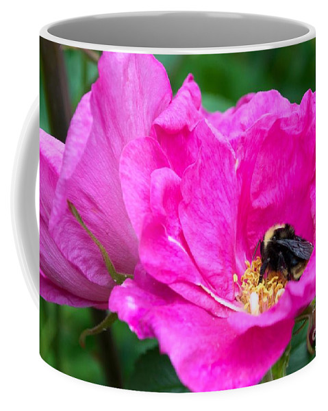 Honey Bee Coffee Mug featuring the photograph Pump Up The Volume by Rebecca Stephens