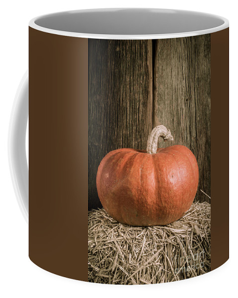Barn Coffee Mug featuring the photograph Pumpkin On Straw Bale by Edward Fielding