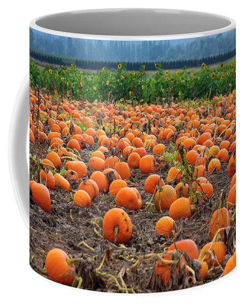 Farm Coffee Mug featuring the photograph Pumpkin Patch by Bruce Block