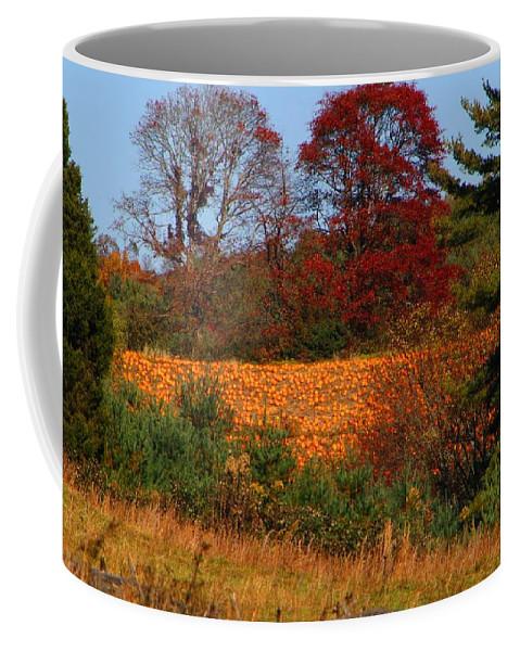 Pumpkins Coffee Mug featuring the photograph Pumpkin Patch by Kathryn Meyer