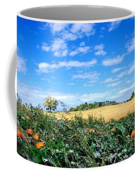 Landscape Coffee Mug featuring the photograph Pumpkin Patch by Steve Karol