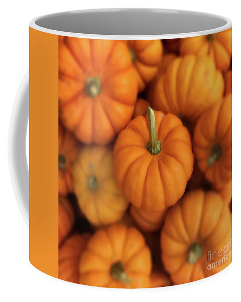 Autumn Coffee Mug featuring the photograph Pumpkins by Jerry Fornarotto
