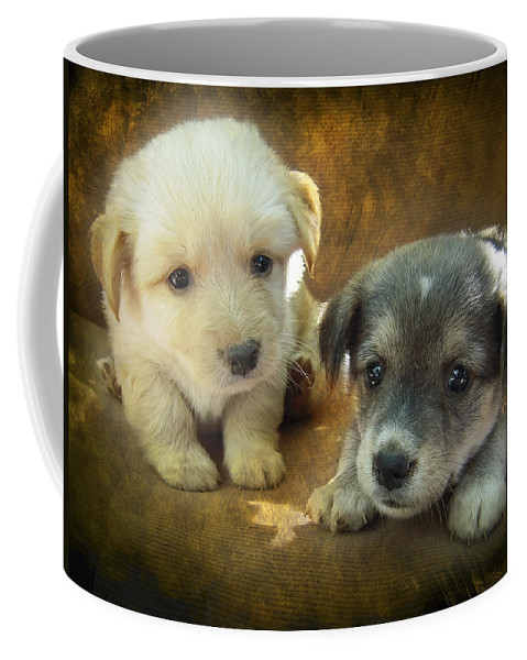 Adorable Coffee Mug featuring the photograph Puppies by Svetlana Sewell