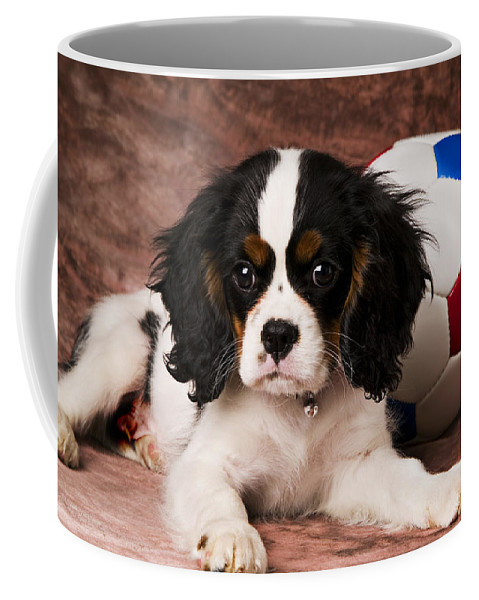 Puppy Dog Cute Doggy Domestic Pup Pet Pedigree Canine Creature Soccer Ball Coffee Mug featuring the photograph Puppy With Ball by Garry Gay