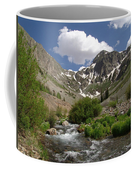 Trees Coffee Mug featuring the photograph Pure Mountain Beauty by Carol Milisen