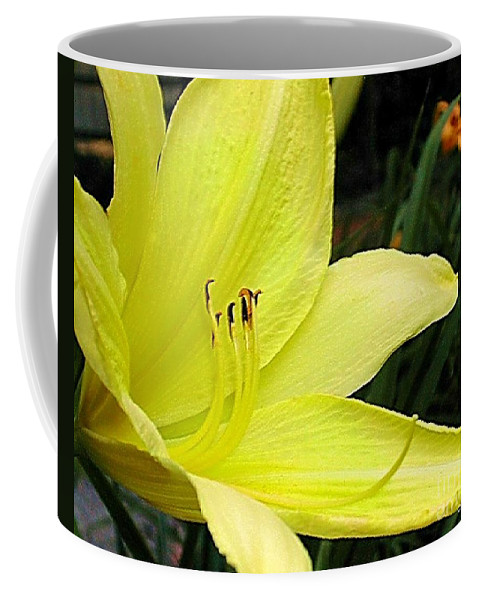 Fine Art Photography Coffee Mug featuring the photograph Pure Sunshine by Patricia Griffin Brett