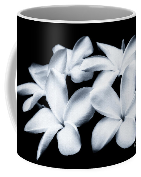 Plumeria Coffee Mug featuring the photograph Pure White Large Canvas Art, Canvas Print, Large Art, Large Wall Decor, Home Decor, Photography by David Millenheft
