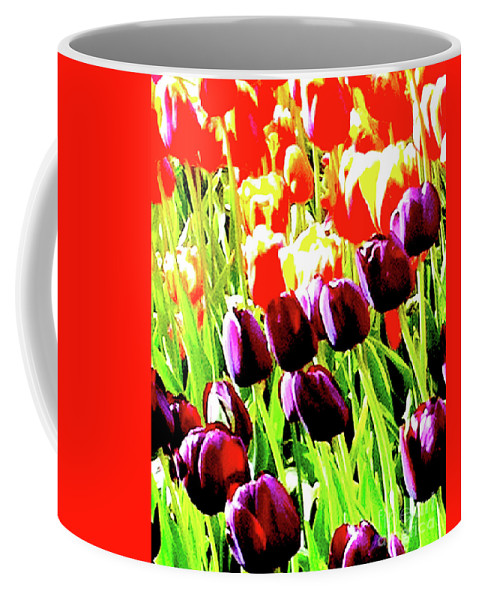 Flower Coffee Mug featuring the photograph Purple And Peach Tulips 2 by Ken Lerner