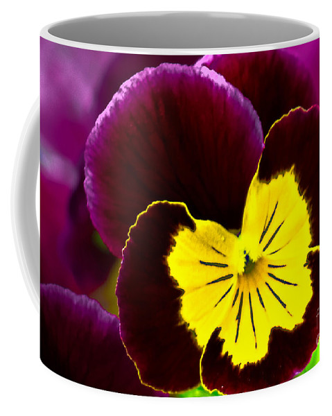Pansy Coffee Mug featuring the photograph Purple And Yellow Pansy by Amber D Hathaway Photography