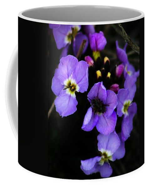 Flowers Coffee Mug featuring the photograph Purple Arctic Wild Flowers by Anthony Jones