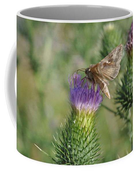 Butterfly Coffee Mug featuring the photograph Purple Attratcion by Eduard Meinema