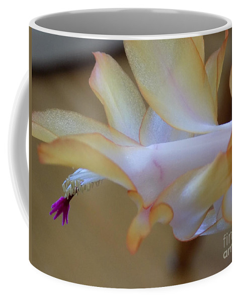 Succulents Coffee Mug featuring the photograph Purple Bell by William Tasker