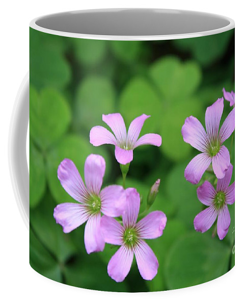 Clover Coffee Mug featuring the photograph Purple Clover by John W Smith III