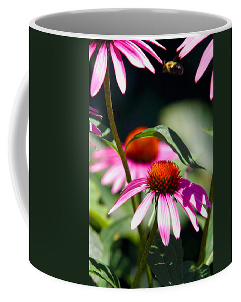 Bee Coffee Mug featuring the photograph Purple Cones And Honey Bees by Alan Look