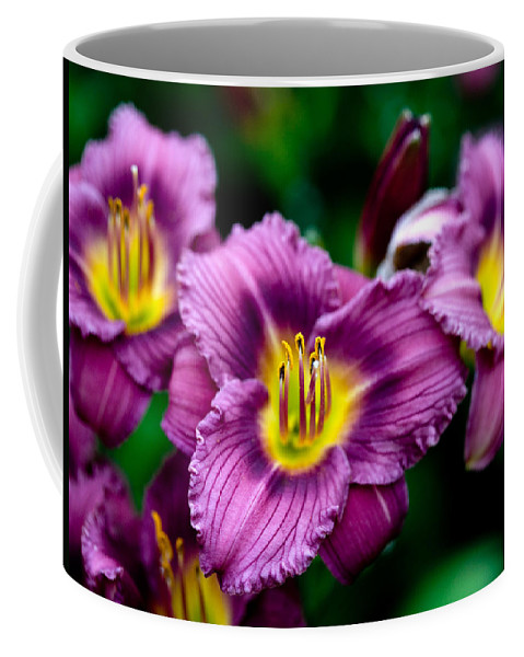 Flower Coffee Mug featuring the photograph Purple Day Lillies by Marilyn Hunt