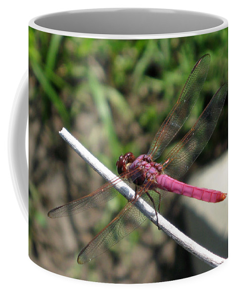 Dragonfly Coffee Mug featuring the photograph Purple Dragon by Shoal Hollingsworth