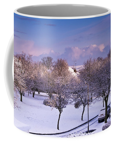 Garden Coffee Mug featuring the photograph Purple February by Svetlana Sewell