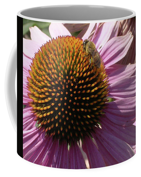 Purple Coffee Mug featuring the photograph Purple Flower by Kristina Bliss