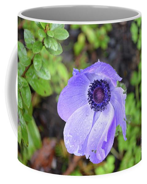 Anemone Coffee Mug featuring the photograph Purple Flowering Anemone Flower In A Lush Green Garden by DejaVu Designs
