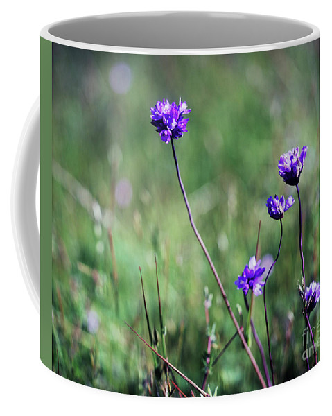 Purple Coffee Mug featuring the photograph Purple Flowers by Jim And Emily Bush
