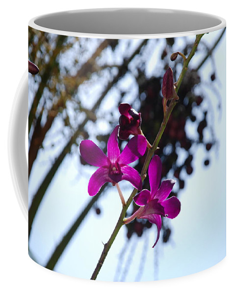 Macro Coffee Mug featuring the photograph Purple Flowers In The Sky by Rob Hans