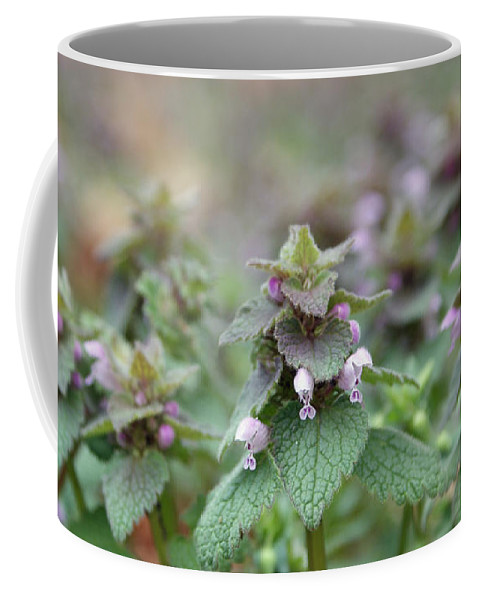 Flower Coffee Mug featuring the photograph Purple Haze by Jean Haynes