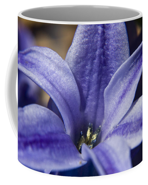 Hyacinth Coffee Mug featuring the photograph Purple Hyacinth by Teresa Mucha