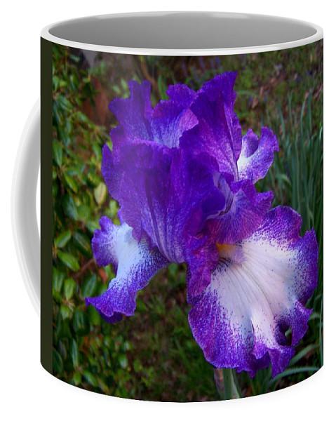 Purple Coffee Mug featuring the photograph Purple Iris by Jai Johnson
