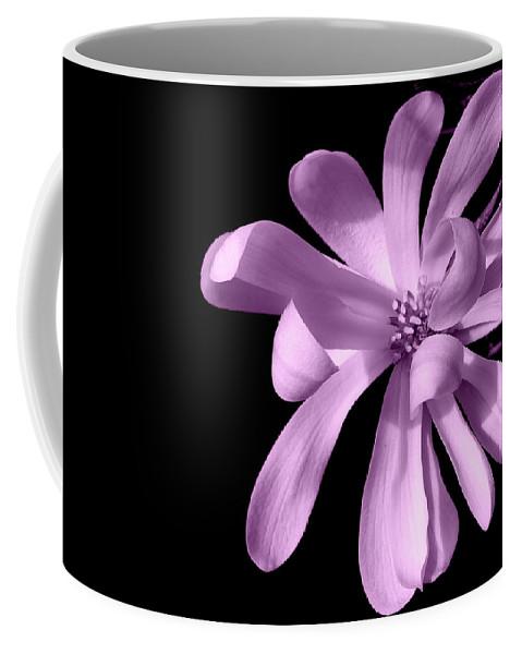 Magnolia Coffee Mug featuring the photograph Purple Magnolia by Dianne Pettingell
