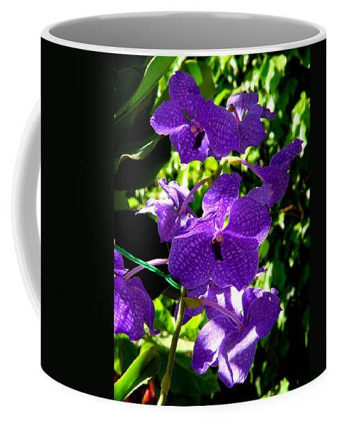 Orchids Coffee Mug featuring the photograph Purple Orchids by Susanne Van Hulst