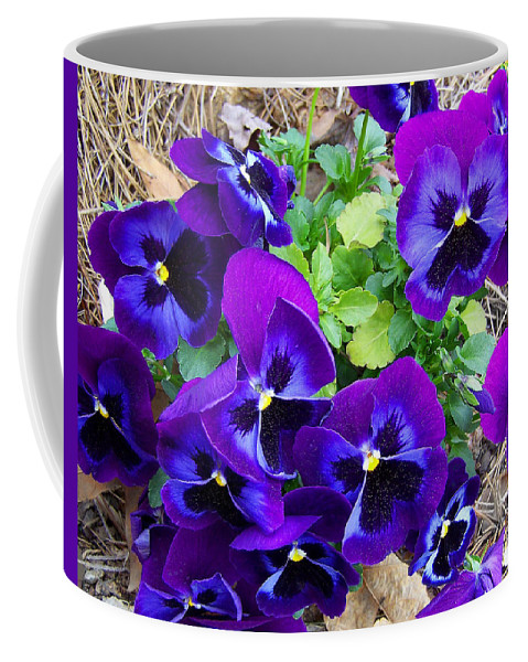 Pansies Coffee Mug featuring the photograph Purple Pansies by Sandi OReilly