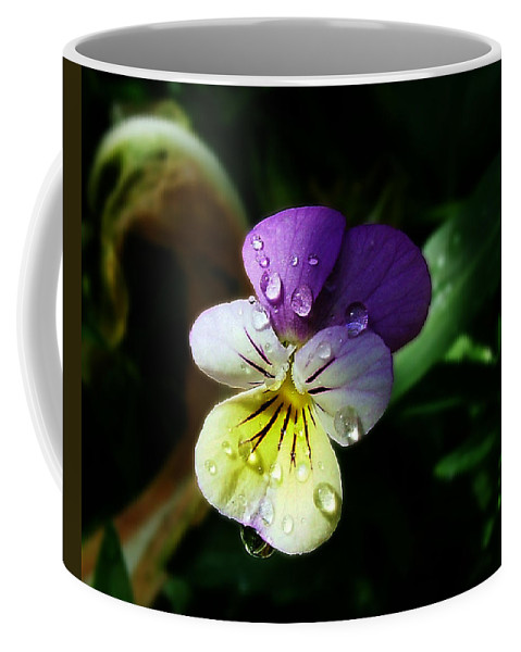 Flower Coffee Mug featuring the photograph Purple Pansy by Anthony Jones