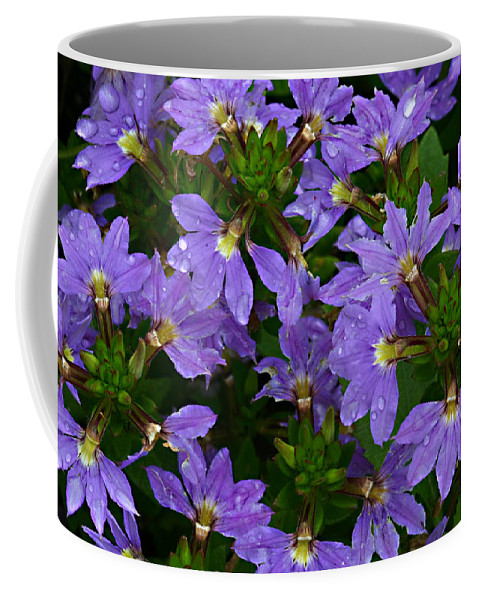 Purple Flower Plant Green Photograph Photography Coffee Mug featuring the photograph Purple Perspective by Shari Jardina