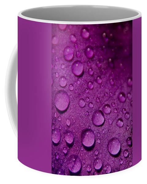 Nature Coffee Mug featuring the photograph Purple Rain by Chris Berry