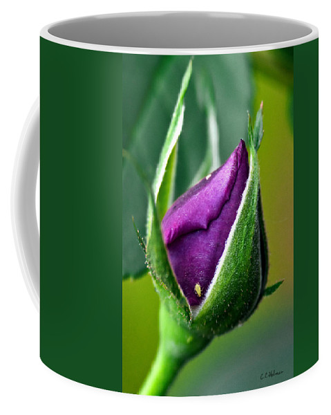 Rose Coffee Mug featuring the photograph Purple Rose Bud by Christopher Holmes