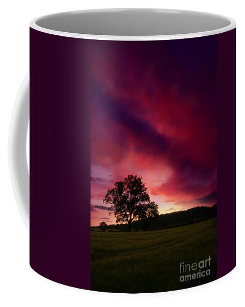 Tree Coffee Mug featuring the photograph Purple Skies by Angel Ciesniarska