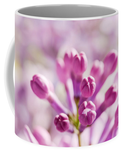 Lilac Coffee Mug featuring the photograph Purple Spring Lilac Flowers Blooming Close-up by Michal Bednarek