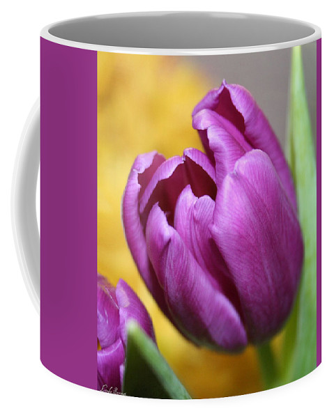 Flowers Nature Coffee Mug featuring the photograph Purple Spring by Linda Sannuti