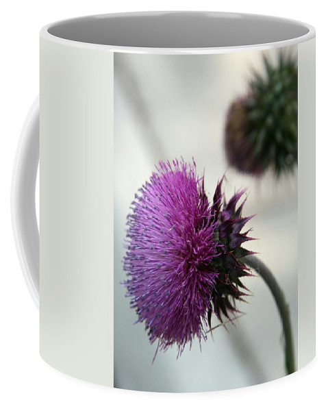 Thistle Coffee Mug featuring the photograph Purple Thistle by Christiane Schulze Art And Photography