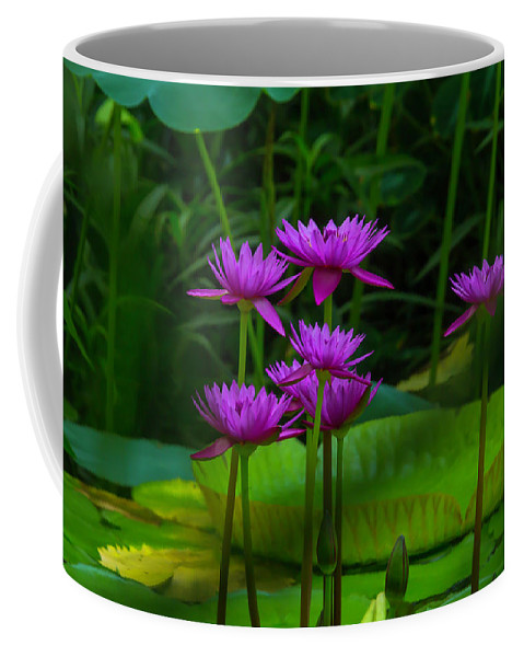 Purple Coffee Mug featuring the photograph Purple Water Lilies by Garry Gay
