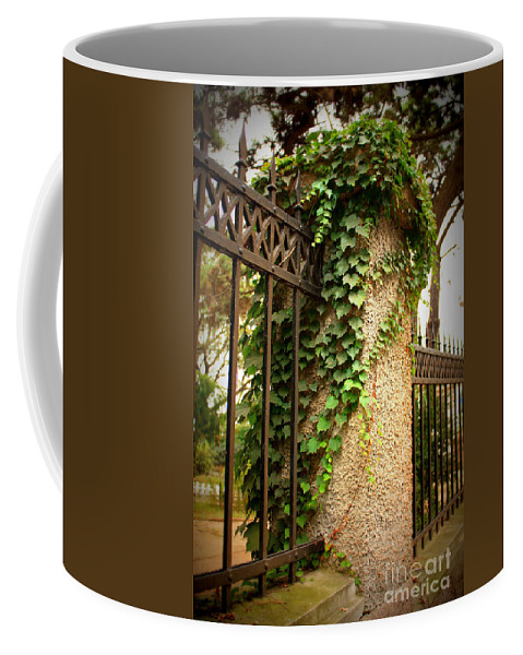 Rod Iron Fence Coffee Mug featuring the photograph Qingdao Castle Garden by Carol Groenen