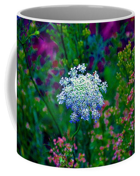 Queen Annes Lace Coffee Mug featuring the photograph Queen Anne by Brittany Horton