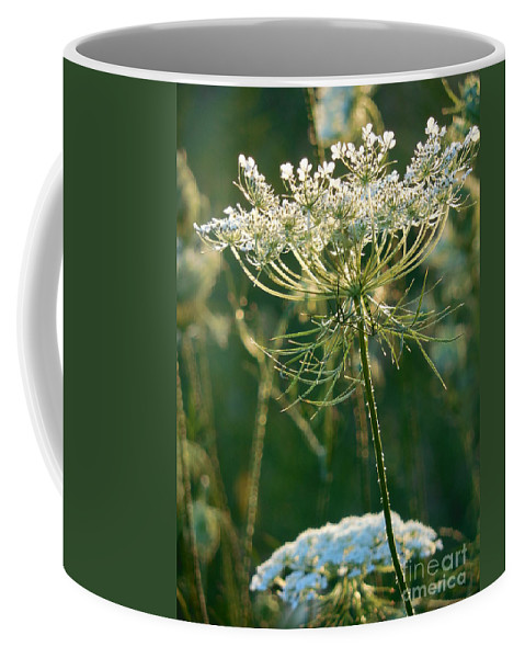 Queen Anne's Lace Coffee Mug featuring the photograph Queen Anne's Lace In Green Vertical by Rowena Throckmorton