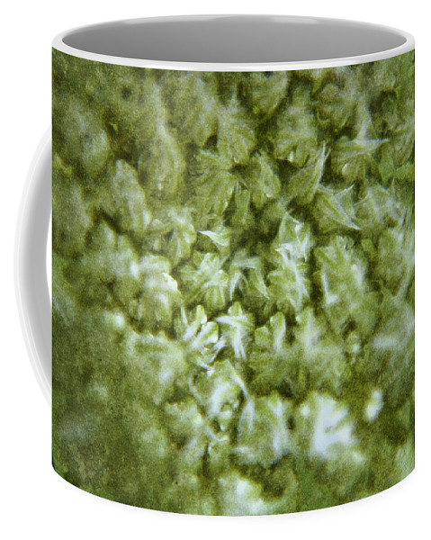 Queen Coffee Mug featuring the digital art Queen Annes Lace by Teresa Mucha